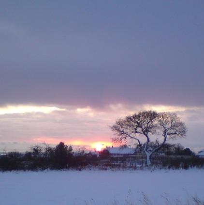 shilbottle sunrise